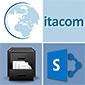 Backup für Sharepoint Online